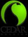 Cedar Holding